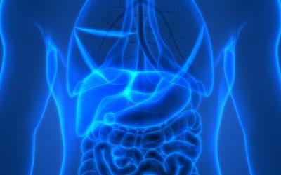 Zsírmáj, mint gyakori diagnózis